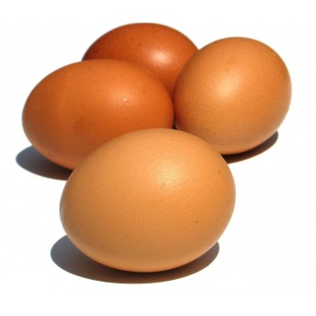 Farm Fresh Free-Range Eggs